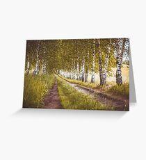 Autumn birches alley Greeting Card