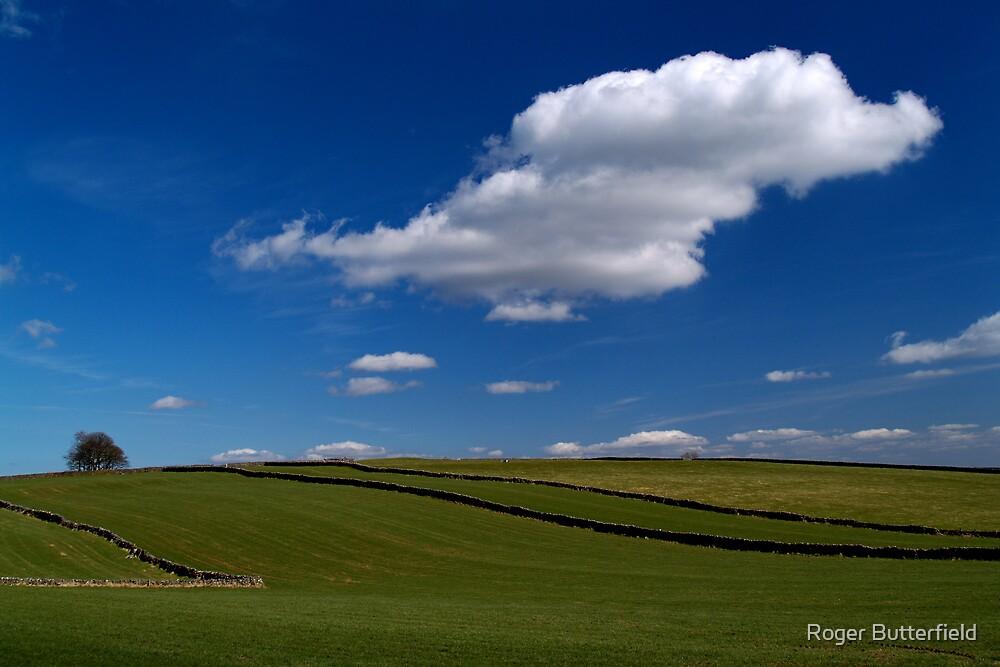 Fields near Tideswell by Roger Butterfield