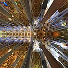 Sagrada Familiar, the Ceiling... by Peter Doré