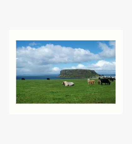 Farm land and the Stanley nut on the far nor west coast of Tasmania Art Print