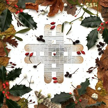 DECEMBER: Stewardship by Cedarseed