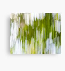 Bright Nature Sweep Canvas Print