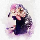 House Rooster, A Study in Purple by HermitStudio
