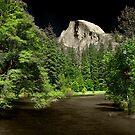 Yosemite dColoring 005 by Daniel H Chui