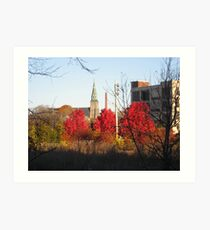 three red maples urban stormoak lonewind Art Print