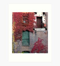 Doors and Vines Art Print