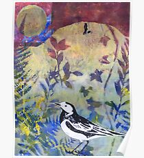 Pied Wagtail in Landscape Print 4 Poster