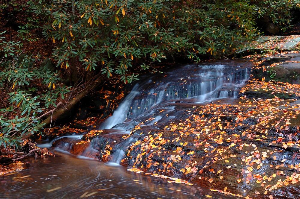 Pinacle Falls, South Carolina by fauselr