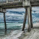 Walk Along the Seashore by designingjudy