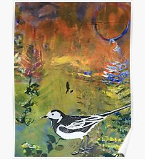 Pied Wagtail in Landscape Print 3 Poster