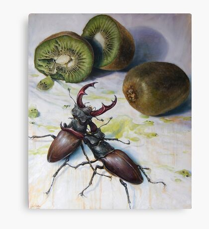 """"""" Kiwis and Stag Beetles ( Struggle for Constancy)"""" Canvas Print"""