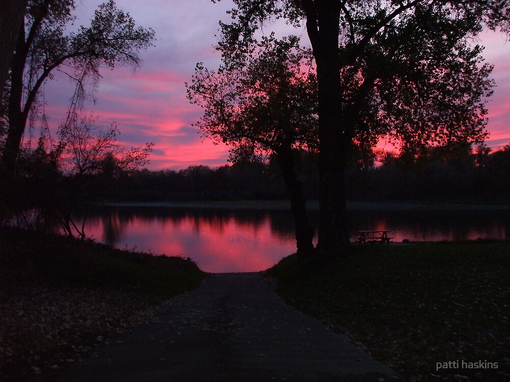 SAILORS DELIGHT by patti haskins