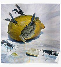 Lemon and Mud Daubers Poster