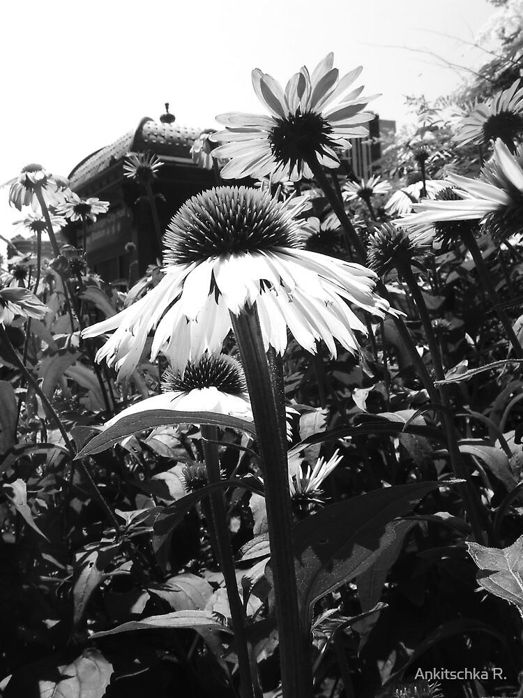 Flower in N.Y. by Anca  Reichlmair