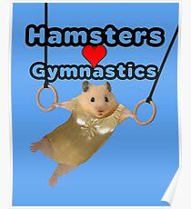 Hamsters Love Gymnastics Poster