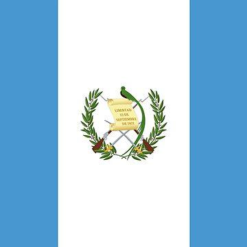 Flag of Guatemala, Guatemala Flag, National Flag, Pabellón Naciona by TOMSREDBUBBLE
