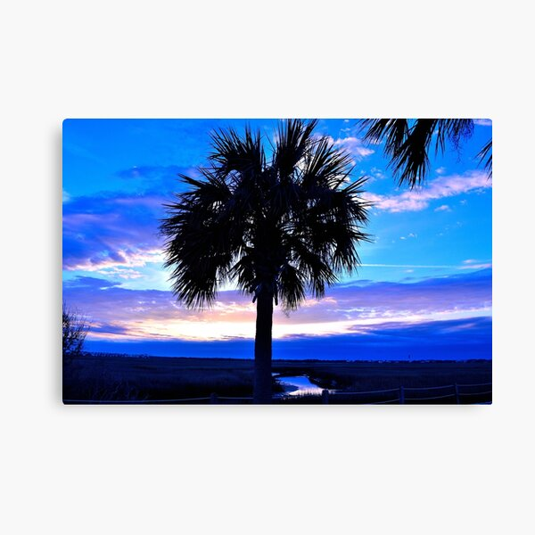 Blue Palm Canvas Print