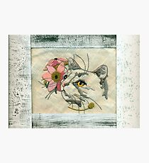 Needlepoint Cat Scannogram  Photographic Print