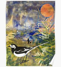 Pied Wagtail in Landscape Print 1 Poster