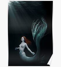 Mermaid with Shells  Poster