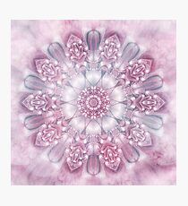 Dreams Mandala in Pink, Grey, and White Photographic Print