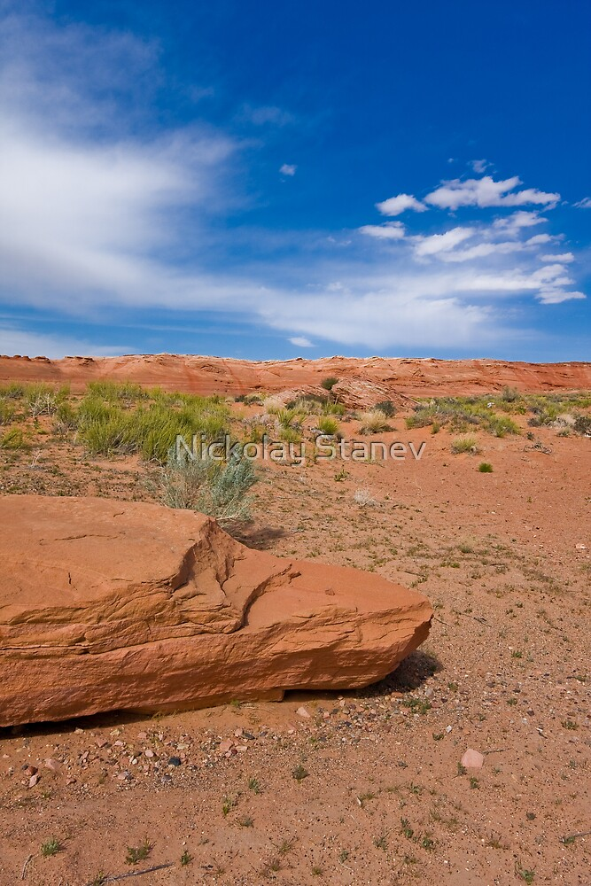 Desert by Nickolay Stanev