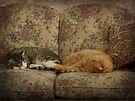 Couch Potatoes by FrankieCat