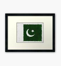 Pakistan Flag Reworked No. 66, Series 5 Framed Print