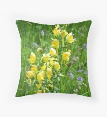 Butter-and-Eggs Throw Pillow