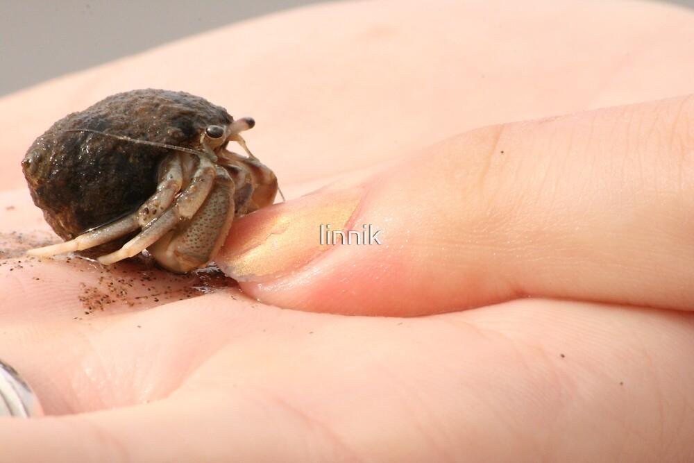 Little Friend by linnik