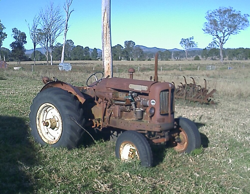 Nuffield Tractor - Rust in Peace by Terry  Jackson
