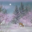 Peace On Earth by Barbara A. Boal