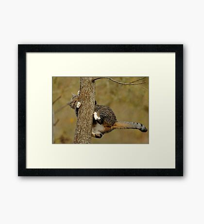 How Does This Work, Now? Framed Print