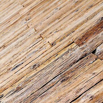 Boardwalk by hlehnerer