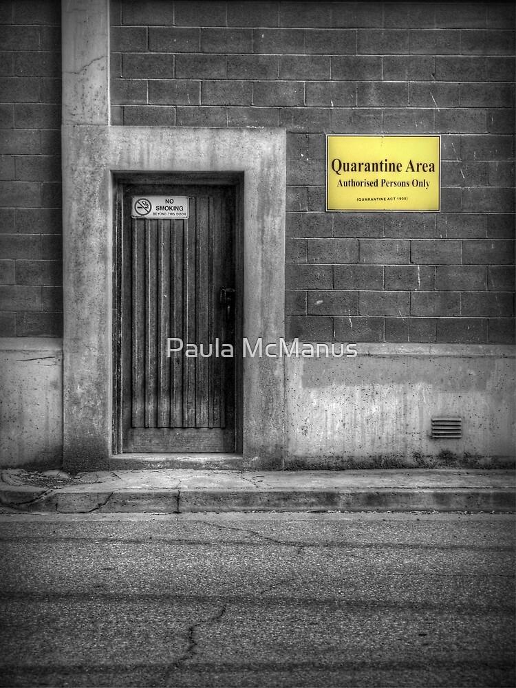 Quarantine Area by Paula McManus