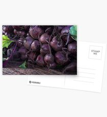 Fresh Organic Beets Postcards