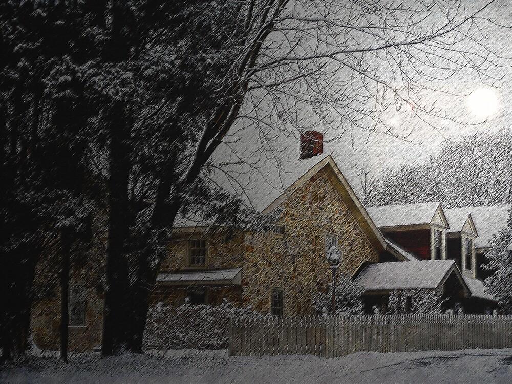 Snowy Scene by Judi Taylor