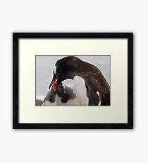 Mum and Chick Framed Print