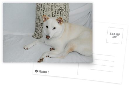 Shiba Inu -- Yuki If you like, purchase, try a cell phone cover thanks! by zwrr16