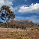 Wilpena Pound. South Australia. by johnrf