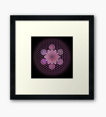 Fleur d'Aire Framed Print