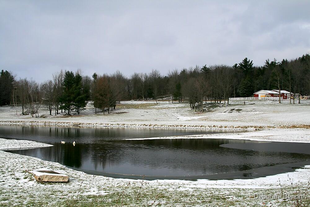 I Think Winter Is Here by Deborah  Benoit