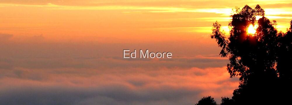 Winter Sunrise - San Francisco Bay Area by Ed Moore