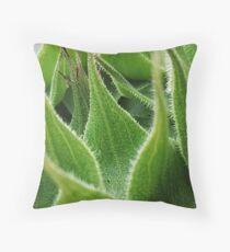 Macro Green Sunflower Head Throw Pillow