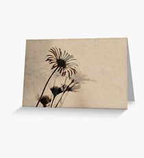 recollections Greeting Card