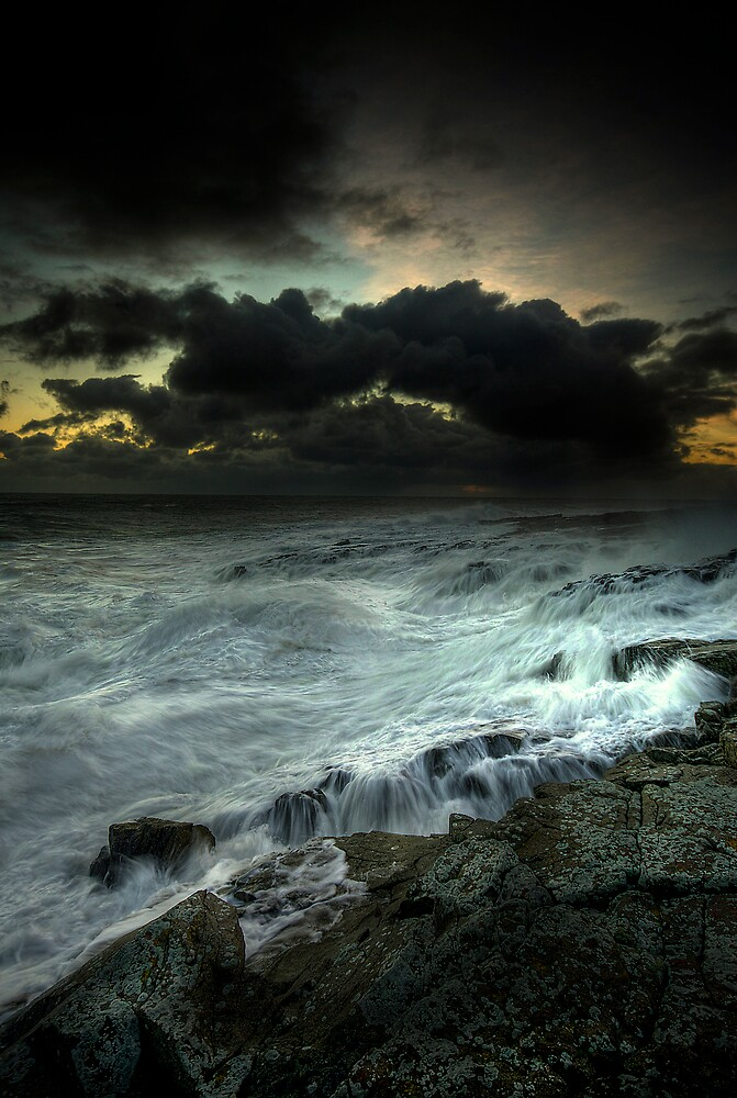 CREEPING ASHORE by STEVE  BOOTE