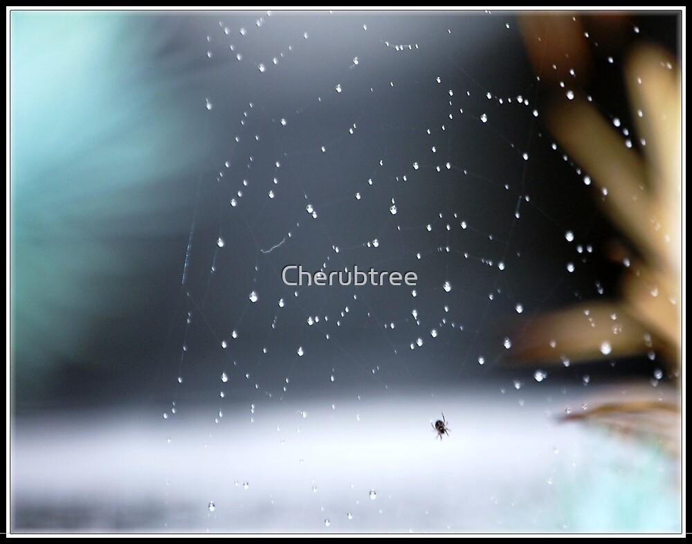 Raindrops on my web by Cherubtree