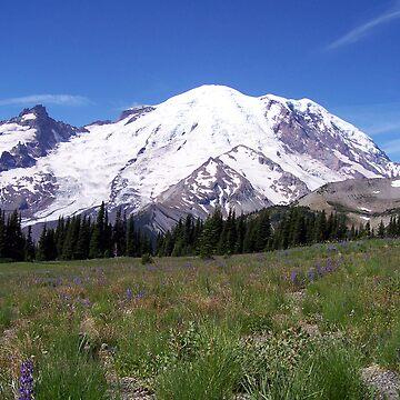 Mount Rainier by KGMiller