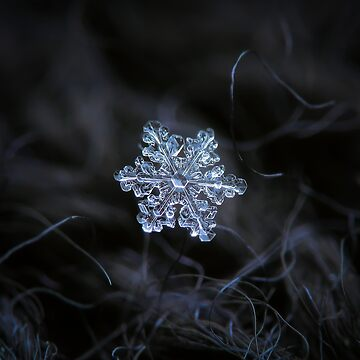 Real snowflake - 2017-12-07 1 by chaoticmind75