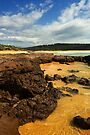 Short Point at Merimbula by Darren Stones